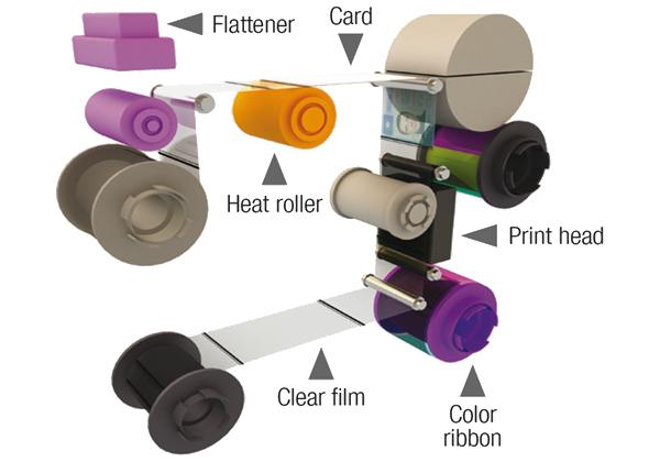 Avansia Printing Process
